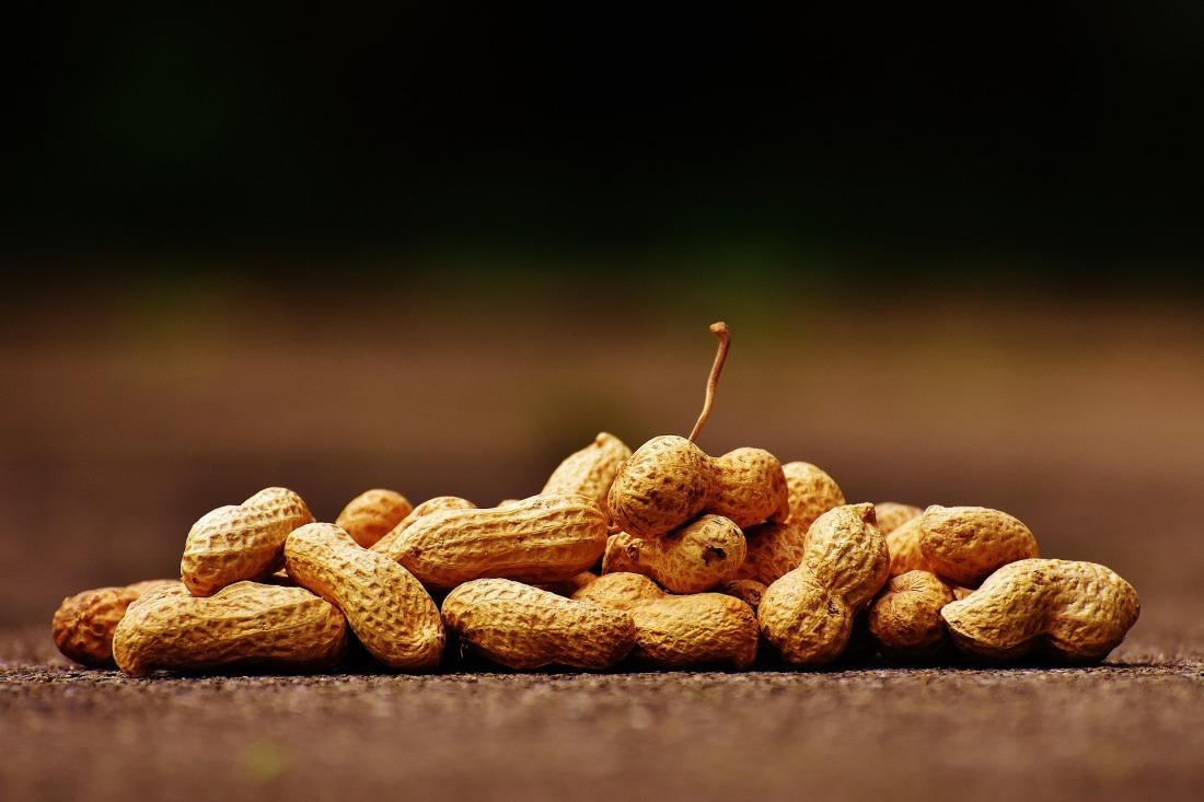peanuts-1735672_1920
