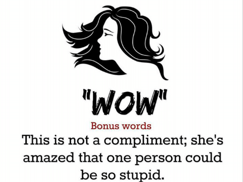 """meme with clipart profile of a woman and words, """"'wow' This is not a compliment; she's amazed that one person could be so stupid."""""""